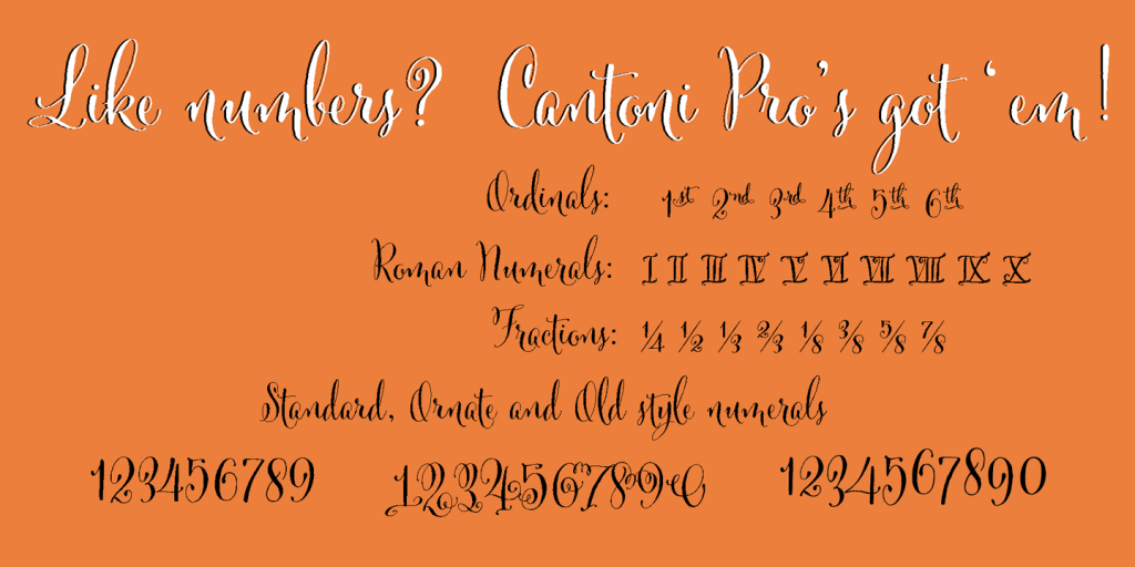 Cantoni-Numerals,Cantoni Script font, calligraphy font,script font, fancy font, hand lettered font, hand written font, fancy alphabet, fonts for invitations, best selling fonts, most popular fonts, unique fonts, fonts for weddings, wedding fonts, fonts for invitations, diy wedding fonts, diy wedding, flourishes, ornaments, wedding flourishes, wedding ornaments, wedding,